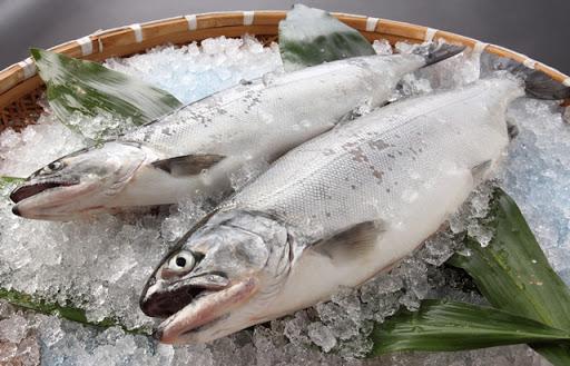 湖北のおいしい食材特集~幻の魚ビワマス~