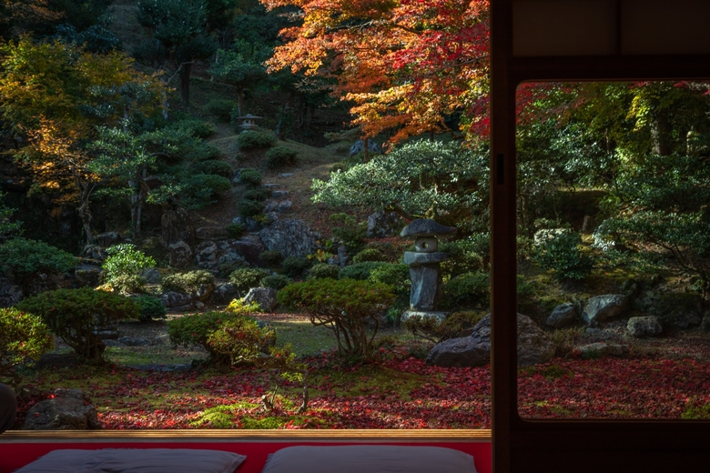湖国が誇る景観特集|滋賀県湖北エリアに来たらここは外せないスポット